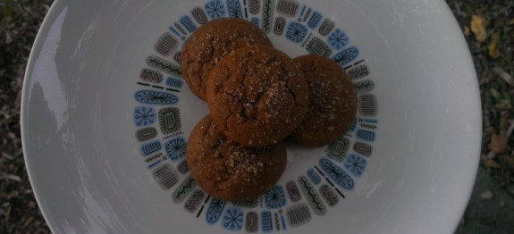 Soft Pumpkin Molasses Cookies
